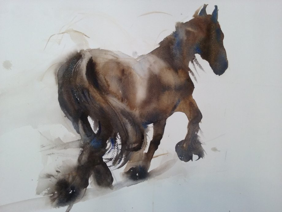 Corry Kooi, 'Fries paard', 50 x 60 cm, Aquarel