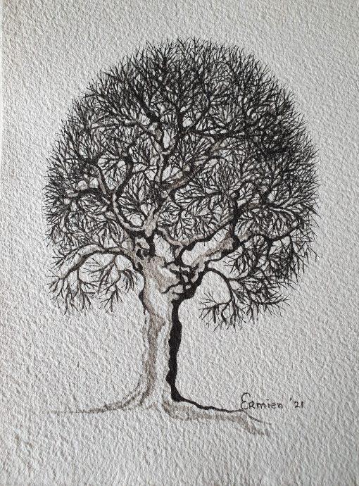 Ermien Koster. Tree. Inkttekening met penseel op geschept papier, in zwarte passe-partout en houten zwarte lijst. 29,5 x 19,5 cm, lijst 40 x 50 cm.