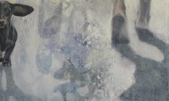 Iris Schreven