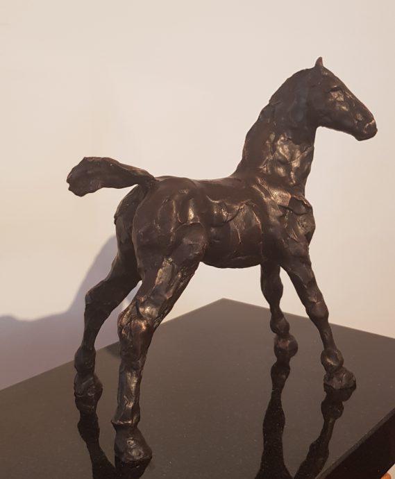 Brons Fries veulen. Oplage van 8. 15x18x8 cm. Granieten sokkel 25x18x3 cm. €775,-